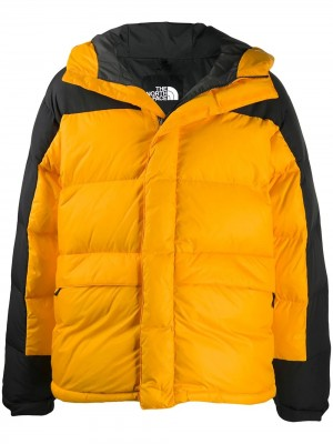 The North Face Jacket| Di Pierro Brand Store